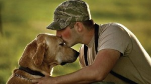 dogs for military vets